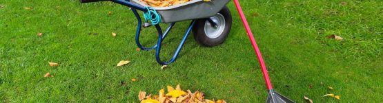 How Does a Wheelbarrow Work