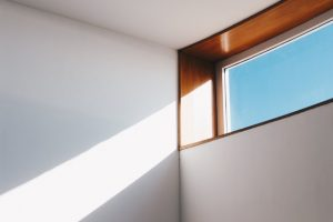 Types of Roller Shades